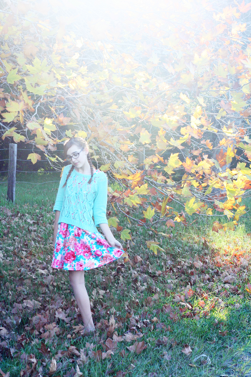 Autumn leaves2