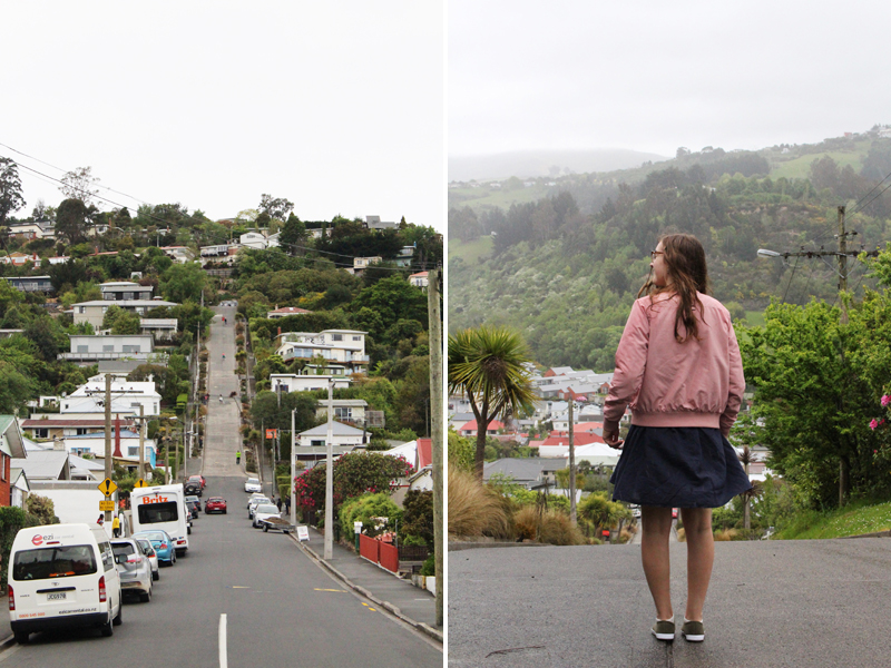 New zealand south island dunedin baldwin street steepest street in world